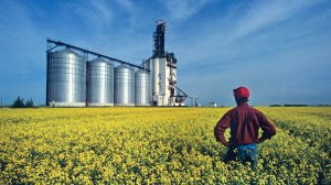 agriculture solutions and automation
